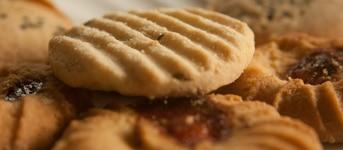 Optimiser la mise au point et la mise en oeuvre des fourrages à biscuits